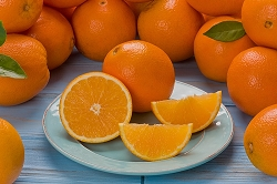 Florida Navel Oranges